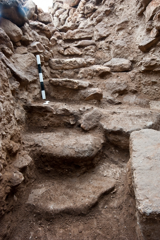 So far eight steps of a stairway were discovered in the apparently more complex entrance situation of Enclosure D. (Photo: N. Becker, DAI)