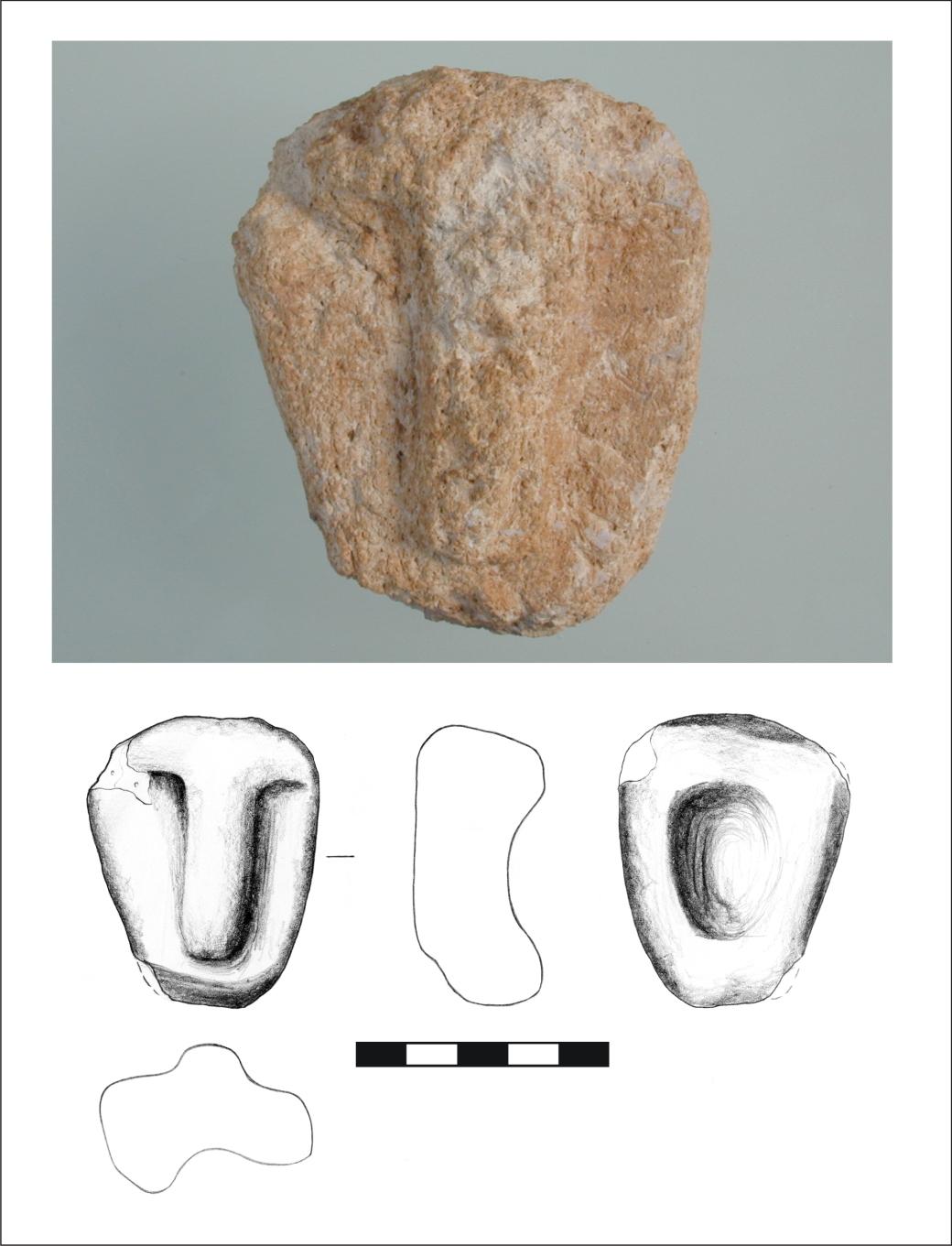 Figure 5_D12